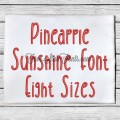 Pineapple Sunshine Embroidery Font